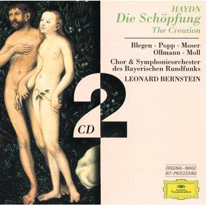 Symphonieorchester des Bayerischen Rundfunks,Leonard Bernstein 歌手頭像