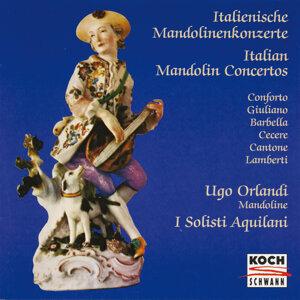 I Solisti Aquilani,Vittorio Antonellini 歌手頭像