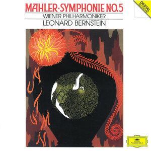 Friedrich Pfeiffer,Wiener Philharmoniker,Leonard Bernstein 歌手頭像
