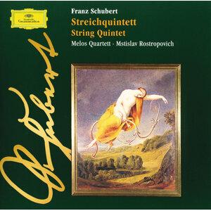 Melos Quartet,Mstislav Rostropovich 歌手頭像