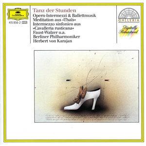 Herbert von Karajan,Berliner Philharmoniker,Wolfgang Meyer,Michel Schwalbé 歌手頭像