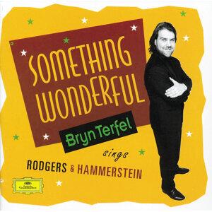Bryn Terfel,Paul Daniel,English Northern Philharmonia 歌手頭像