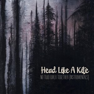 Head Like A Kite 歌手頭像