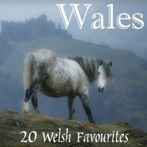 Welsh Wailers 歌手頭像
