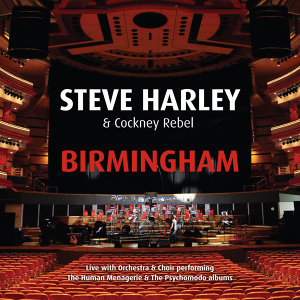 Steve Harley, Cockney Rebel 歌手頭像