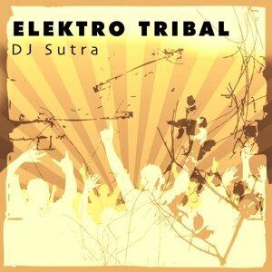 DJ Sutra 歌手頭像