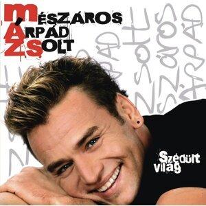 Zsolt Mészáros Árpád 歌手頭像