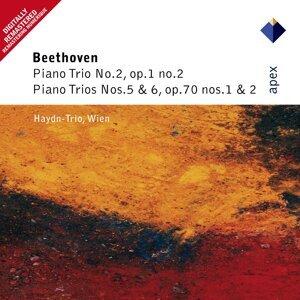 Haydn Trio Wien
