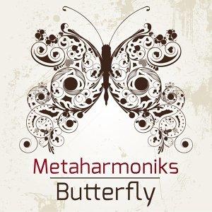 Metaharmoniks 歌手頭像