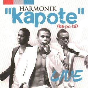 Harmonik 歌手頭像