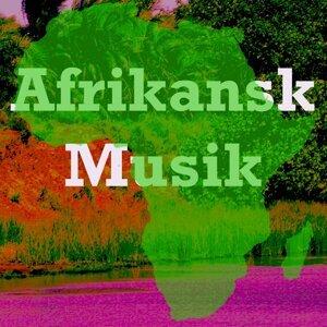 Afrikansk Musik 歌手頭像