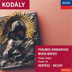 Lajos Kozma,London Symphony Orchestra,István Kertész,Laszlo Heltay,Brighton Festival Chorus 歌手頭像