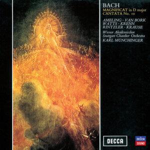 Hymnuschor Stuttgart,Stuttgarter Kammerorchester,Wiener Akademie-Chor,Karl Münchinger 歌手頭像
