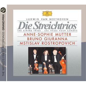 Anne-Sophie Mutter,Mstislav Rostropovich,Bruno Giuranna 歌手頭像