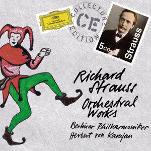 Berliner Symphoniker,Herbert von Karajan 歌手頭像