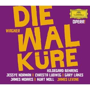 Gary Lakes,Jessye Norman,Kurt Moll,James Levine,Metropolitan Opera Orchestra,Hildegard Behrens 歌手頭像