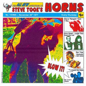 Steve Took's Horns 歌手頭像