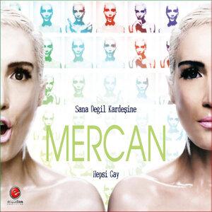 Mercan 歌手頭像