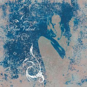 Blue Velvet 歌手頭像