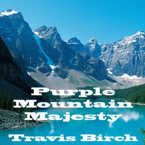 Travis Birch 歌手頭像