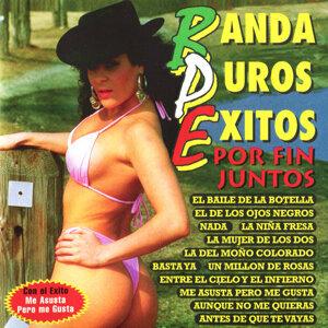 Banda Puros 歌手頭像