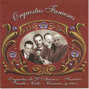 Juan D arienzo - Ricardo Tanturi - Miguel Calo - Hector Varela y otros 歌手頭像