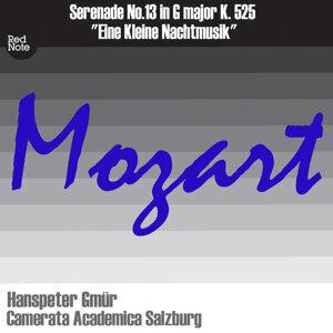 Camerata Academica Salzburg & Hanspeter Gmur 歌手頭像