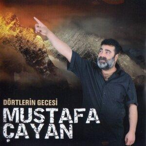 Mustafa Çayan 歌手頭像