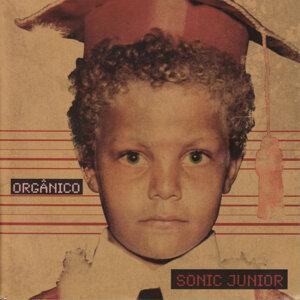 Sonic Junior