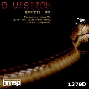 D Vission 歌手頭像
