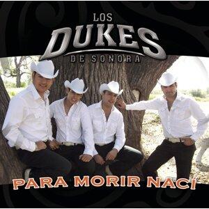 Los Dukes De Sonora 歌手頭像