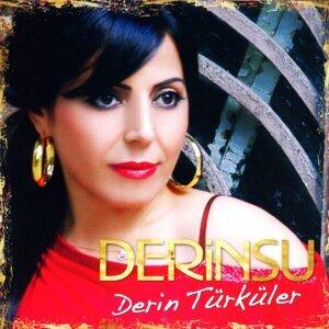 Derinsu 歌手頭像