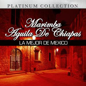 Marimba Aguila De Chiapas 歌手頭像