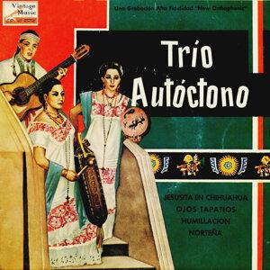"""Trío Autóctono """"Los Ruiseñortes De México"""" 歌手頭像"""
