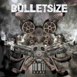 Bulletsize 歌手頭像