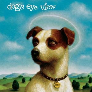 Dog's Eye View