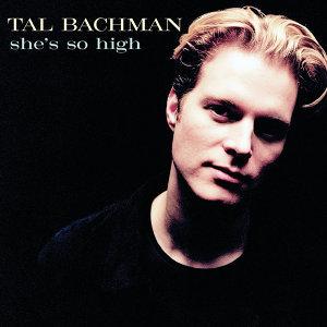 Tal Bachman 歌手頭像