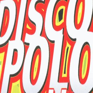 The Disco Polo Experience 歌手頭像