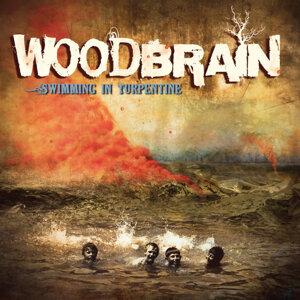 Woodbrain 歌手頭像