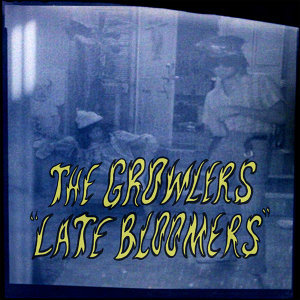 The Growlers 歌手頭像