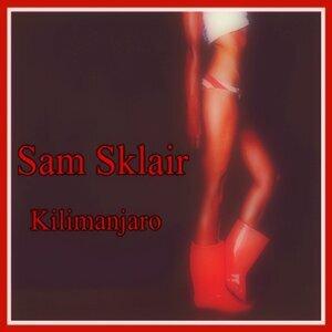 Sam Sklair 歌手頭像