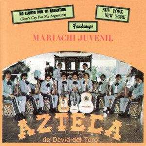 Mariachi Juvenil 歌手頭像
