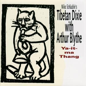 Niko Shäuble's Tibetan Dixie 歌手頭像