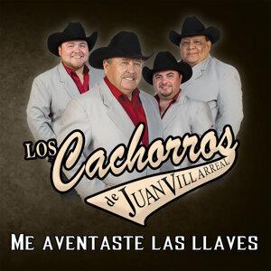 Los Cachorros de Juan Villareal 歌手頭像