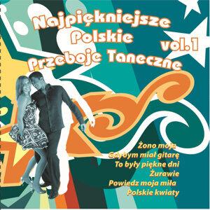 Najpiekniejsze Polskie Przeboje Taneczne 歌手頭像