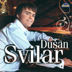 Dusan Svilar 歌手頭像