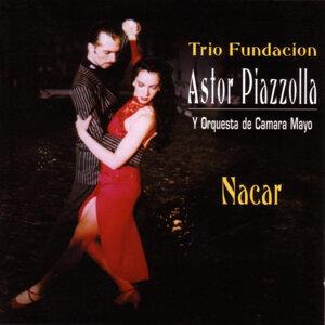 Trio Fundacion Astor Piazolla Y Orquestra de Camara Mayo