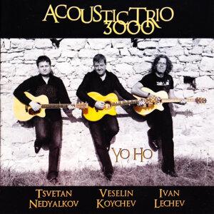 Acoustic Trio 3000 歌手頭像