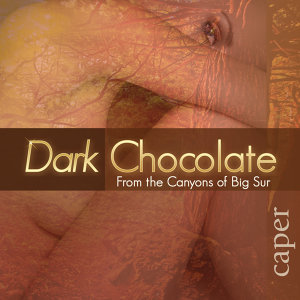 Dark Chocolate 歌手頭像