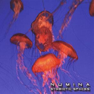 Numina 歌手頭像